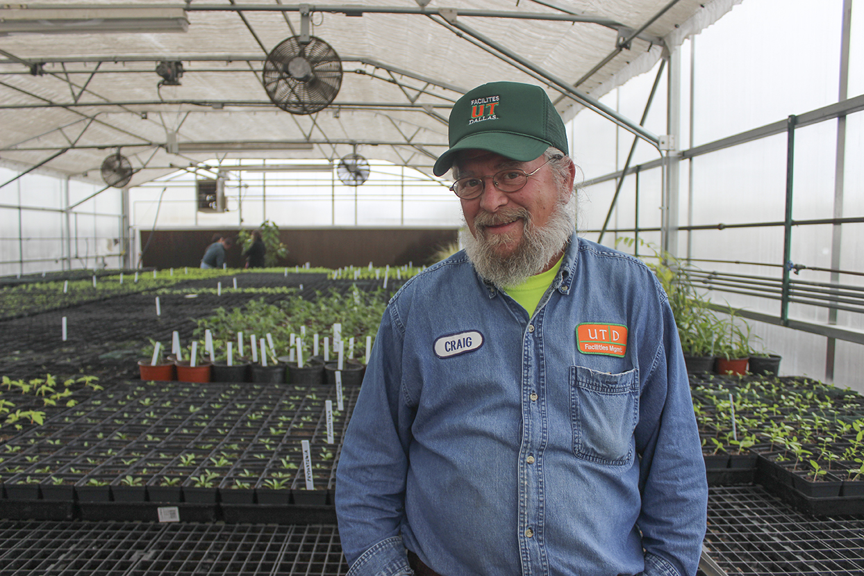Landscaping project to support dwindling butterfly population