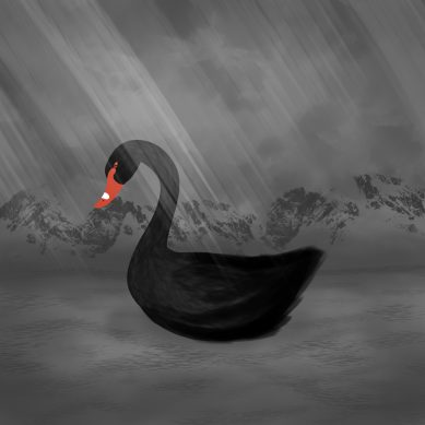 'Black Swan'? More like ugly duckling