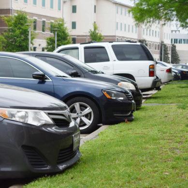 Serial larceny on campus